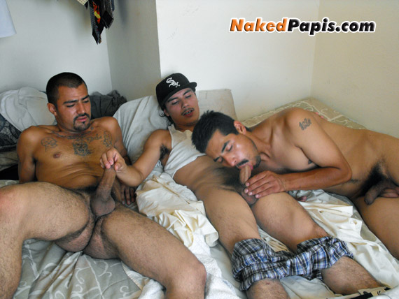 latino men having gay sex